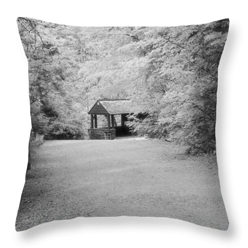 Throw Pillow featuring the photograph Woods by Gerald Kloss