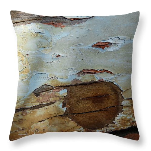Photography Throw Pillow featuring the photograph Works Of The Journey I09 by Andreas Theologitis