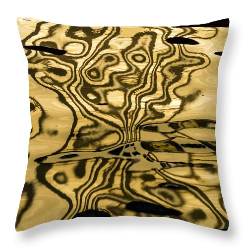 Photography Throw Pillow featuring the photograph Works Of The Journey I11 by Andreas Theologitis