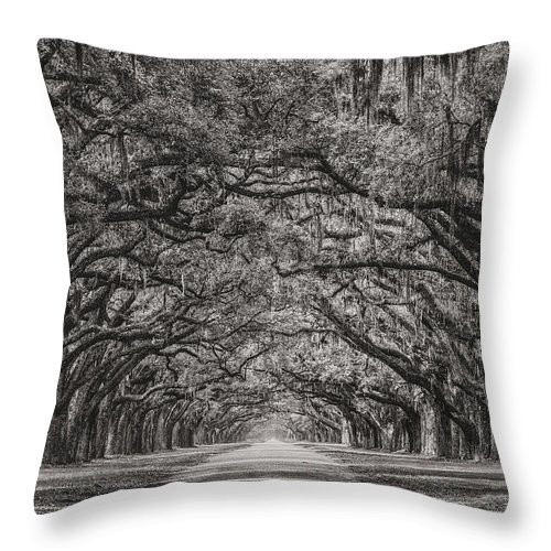 Oak Alley Throw Pillow featuring the photograph Wormsloe Plantation by Chilehead Photography