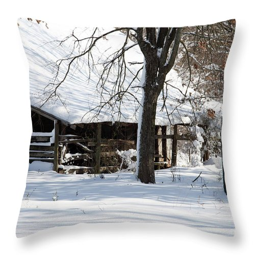 Rural Throw Pillow featuring the photograph Wrapped In Silence by Amanda Barcon