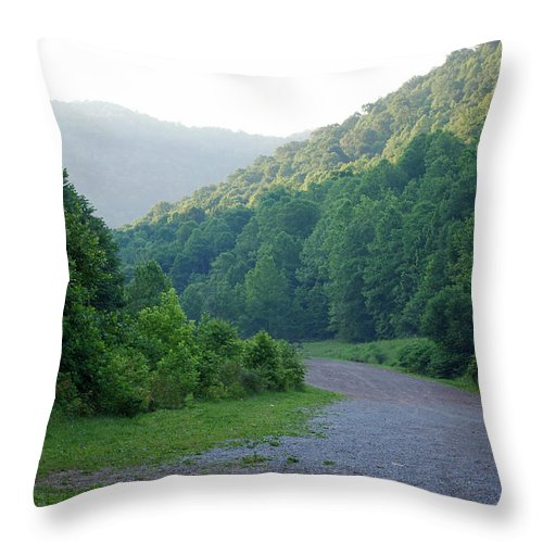 Wv Throw Pillow featuring the photograph Wv Hollow by Phil Burton
