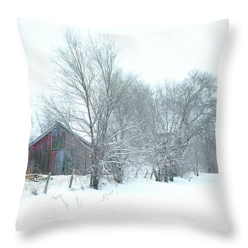 Winter Throw Pillow featuring the photograph Wyeth Winter by Bruce Thompson