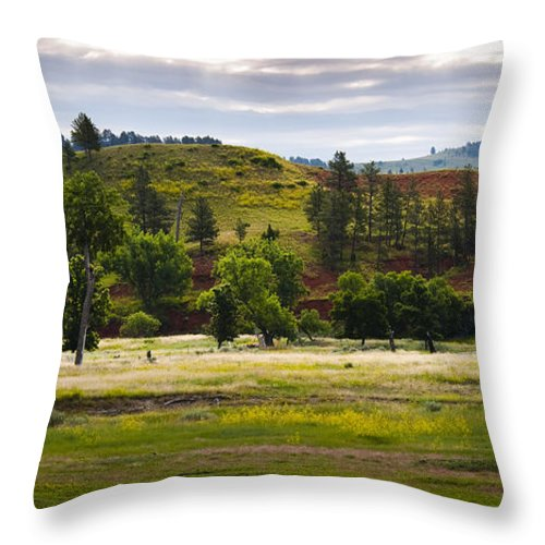 Landscape Throw Pillow featuring the photograph Wyoming Valley by Chad Davis