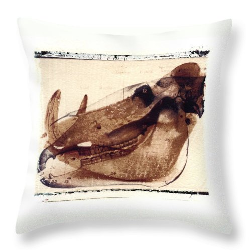 Polaroid Transfer Throw Pillow featuring the photograph X Ray terrestrial No. 6 by Jane Linders