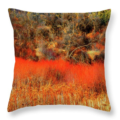 Throw Pillow featuring the photograph Yell Fire by Dean Arneson
