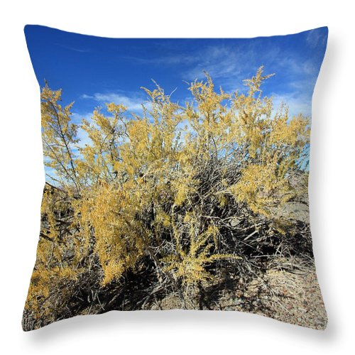 Landscape Throw Pillow featuring the photograph Yellow And Blue by Mary Haber