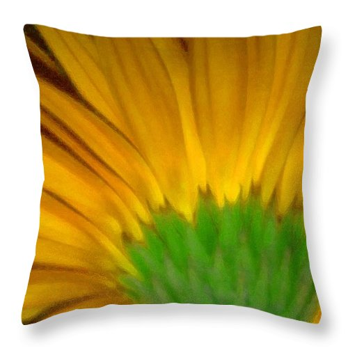 Throw Pillow featuring the photograph Yellow by Andre Giovina