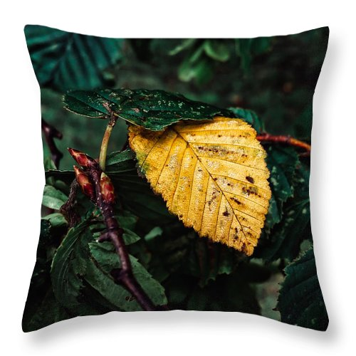 Autumn Throw Pillow featuring the photograph Yellow Autumn Leaf by Melisa Gumbs