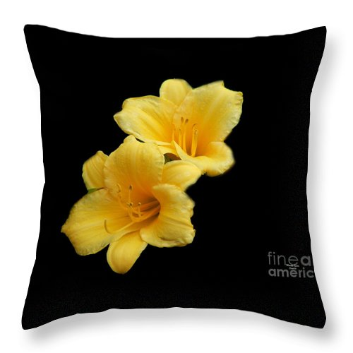 Yellow Flower Throw Pillow featuring the photograph Yellow Beauty by Wanda-Lynn Searles