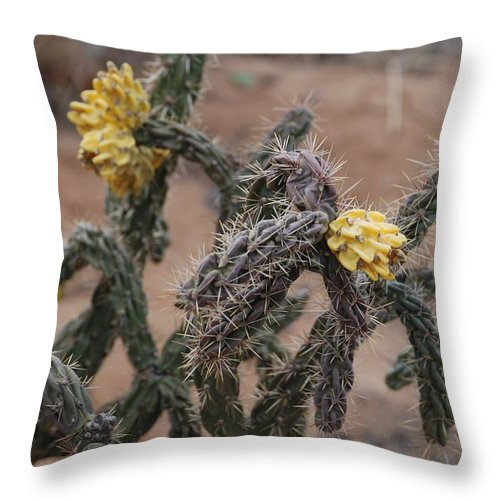 Cactus Throw Pillow featuring the photograph Yellow Cactus by Rob Hans