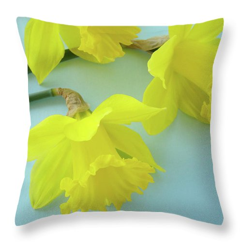 �daffodils Artwork� Throw Pillow featuring the photograph Yellow Daffodils Artwork Spring Flowers Art Prints Nature Floral Art by Baslee Troutman