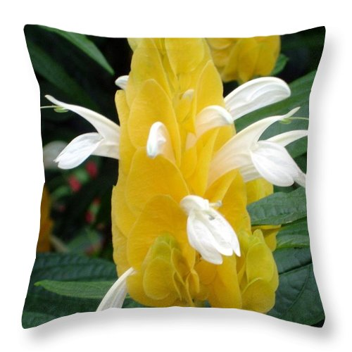 Flower Throw Pillow featuring the photograph Yellow Eruption by Shelley Jones