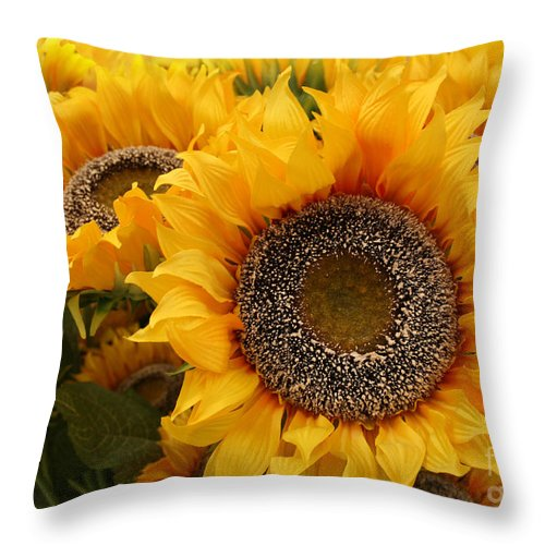Sunflower Throw Pillow featuring the photograph Yellow Flames by Lynn Jackson