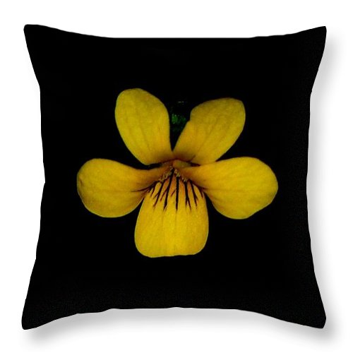 Landscape Throw Pillow featuring the photograph Yellow Flower 1 by David Lane