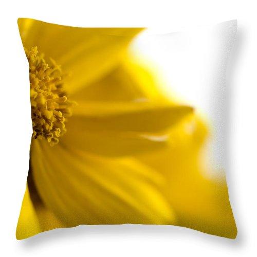Flower Throw Pillow featuring the photograph Yellow Flower by Jessica Wakefield