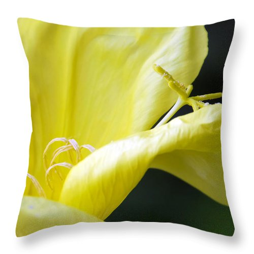 Botanic Throw Pillow featuring the photograph Yellow Flower by Svetlana Sewell