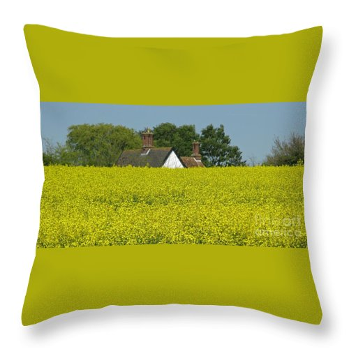Landscape Throw Pillow featuring the photograph Yellow Gold by Ann Horn
