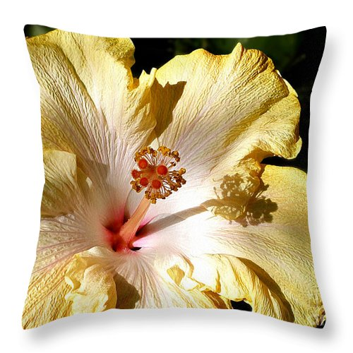 Photography Throw Pillow featuring the photograph Yellow Hibiscus by Kaye Menner