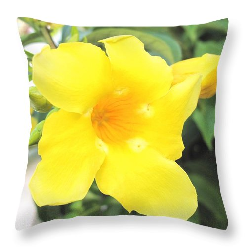 Yellow Throw Pillow featuring the photograph Yellow Hibiscus St Kitts by Ian MacDonald
