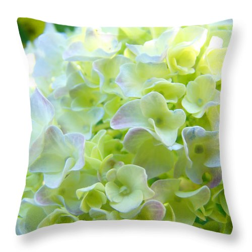 Bright Throw Pillow featuring the photograph Yellow Hydrangea Flowers Art Prints Baslee Troutman by Baslee Troutman