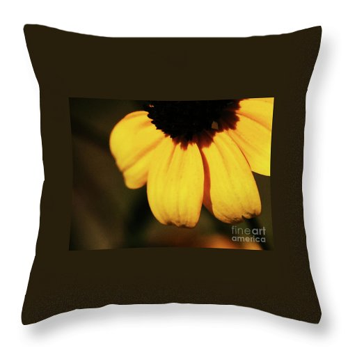 Yellow Throw Pillow featuring the photograph Yellow by Linda Shafer