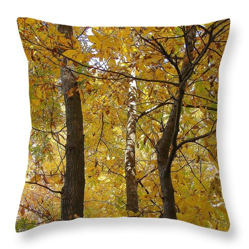 Throw Pillow featuring the photograph Yellow Magic by Luciana Seymour