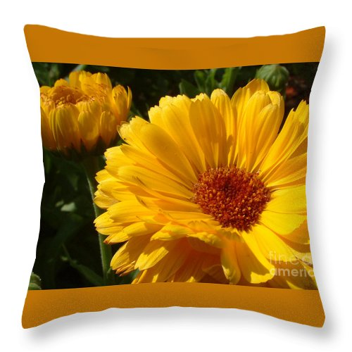 Flower Throw Pillow featuring the photograph Yellow by Mark Grayden