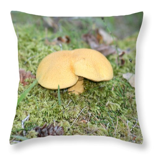 Mushrooms Nature Plants Wild Moss Acorns Forest Throw Pillow featuring the photograph Yellow Mushroom by Andrea Lawrence