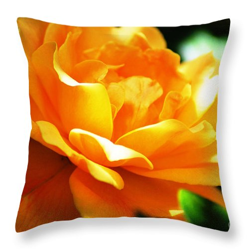 Rose Throw Pillow featuring the photograph Yellow Rose by Donna Bentley