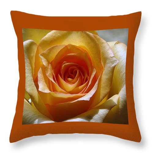 Rose Yellow Throw Pillow featuring the photograph Yellow Rose by Luciana Seymour