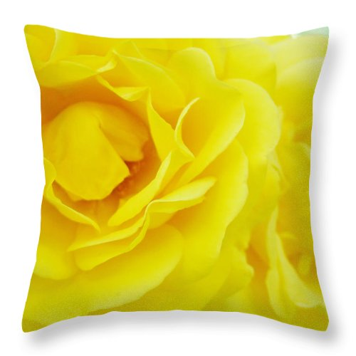 Rose Throw Pillow featuring the photograph Yellow Roses Art Prints Botanical Giclee Prints Baslee Troutman by Baslee Troutman