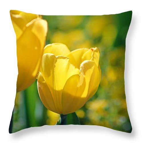 Tulips Throw Pillow featuring the photograph Yellow Twins by Gayle Miller