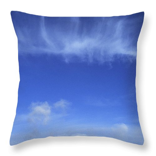 Scenic Throw Pillow featuring the photograph Yellowstone Basin by Doug Davidson