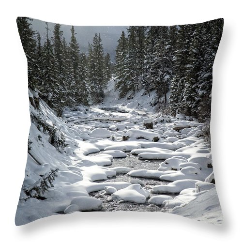 Yellowstone Throw Pillow featuring the photograph Yellowstone - Soda Butte Creek by Wildlife Fine Art