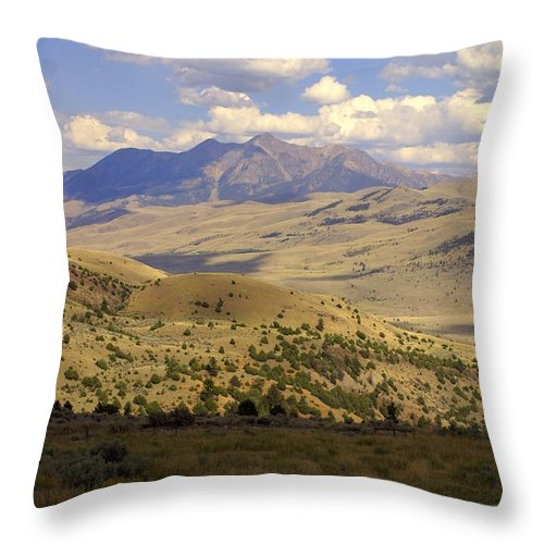 Yellowstone National Park Throw Pillow featuring the photograph Yellowstone View by Marty Koch