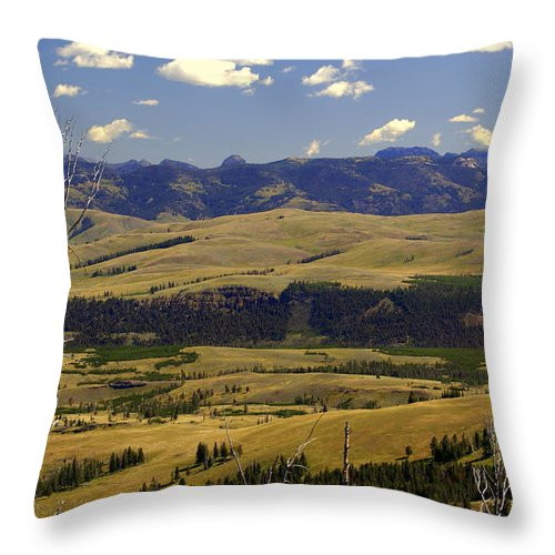 Yellowstone National Park Throw Pillow featuring the photograph Yellowstone Vista by Marty Koch