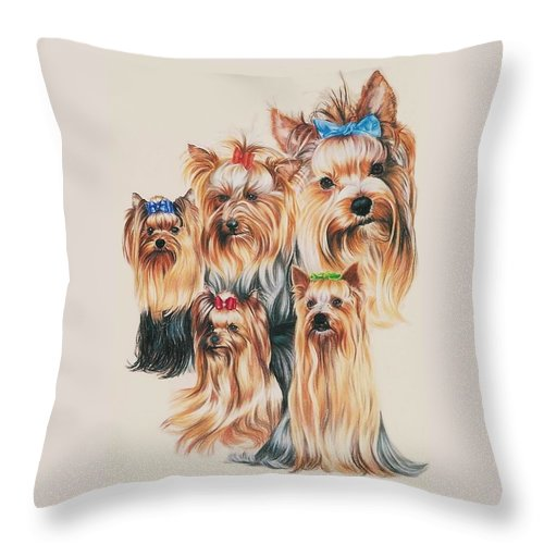 Purebred Throw Pillow featuring the drawing Yorkshire Terrier by Barbara Keith