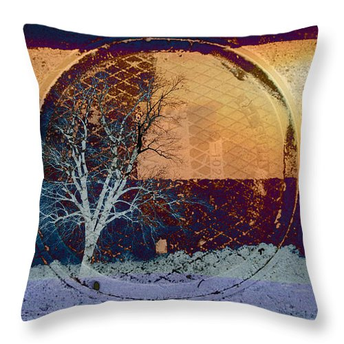 Abstracts Throw Pillow featuring the photograph You Only See What You Know by Jan Amiss Photography