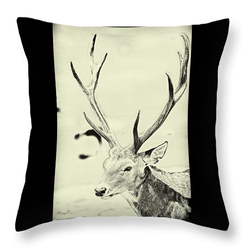 Animal Throw Pillow featuring the digital art Young Buck by Christopher Eng-Wong