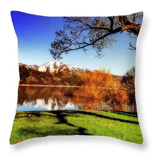 Throw Pillow featuring the photograph Young Trees by Nancy Marie Ricketts