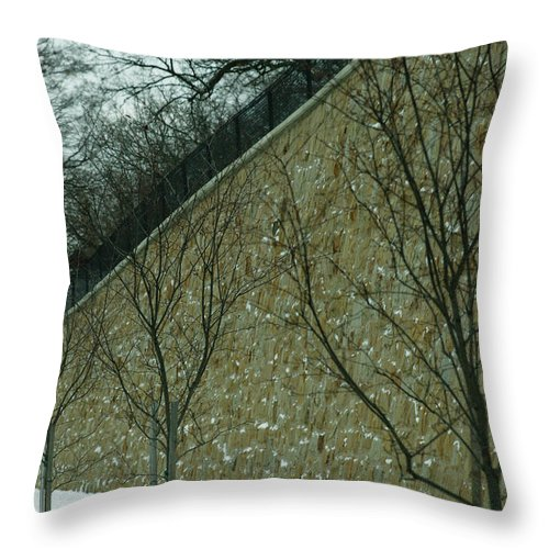 Grand Rapids Throw Pillow featuring the photograph Your Line Of Direction by Linda Shafer