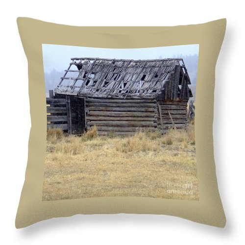 Lp Cover Art Throw Pillow featuring the photograph Your Name Here by Everett Bowers