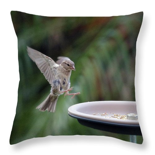Sparrows Throw Pillow featuring the digital art Yummy Dinner Time 01 by Kevin Chippindall