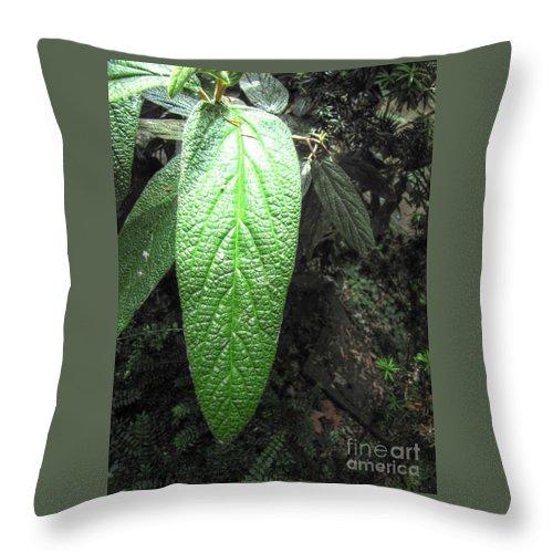 Yury Bashkin.greennno Throw Pillow featuring the pyrography Yury Bashkin Greeee by Yury Bashkin
