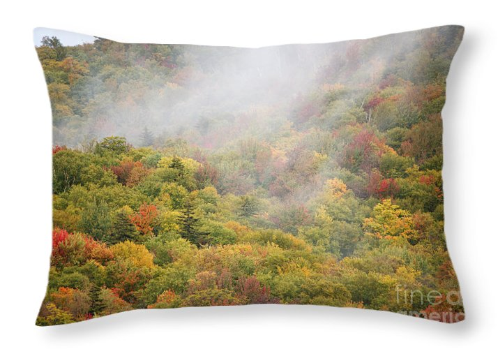 Fall Throw Pillow featuring the photograph Zealand Road - White Mountains New Hampshire by Erin Paul Donovan