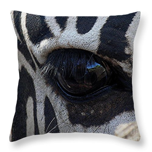 Zebra Throw Pillow featuring the photograph Zebra Eye by Diane Greco-Lesser