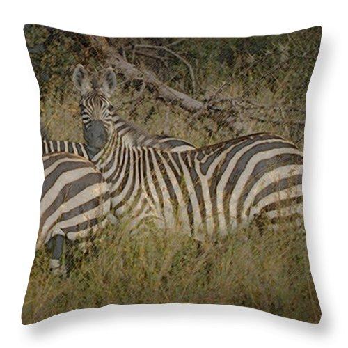 Zebra Throw Pillow featuring the digital art Zebra On The Serengeti by Joseph G Holland