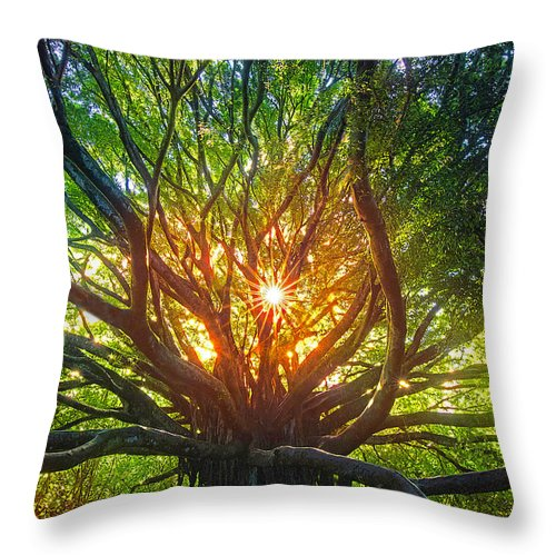 Maui Hawaii Banyan Tree Hana Throw Pillow featuring the photograph zen by James Roemmling