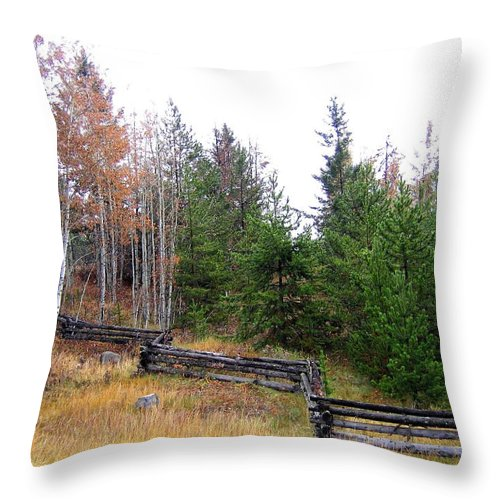 Zigzag Rail Fence Throw Pillow featuring the photograph Zigzag Rail Fence by Will Borden